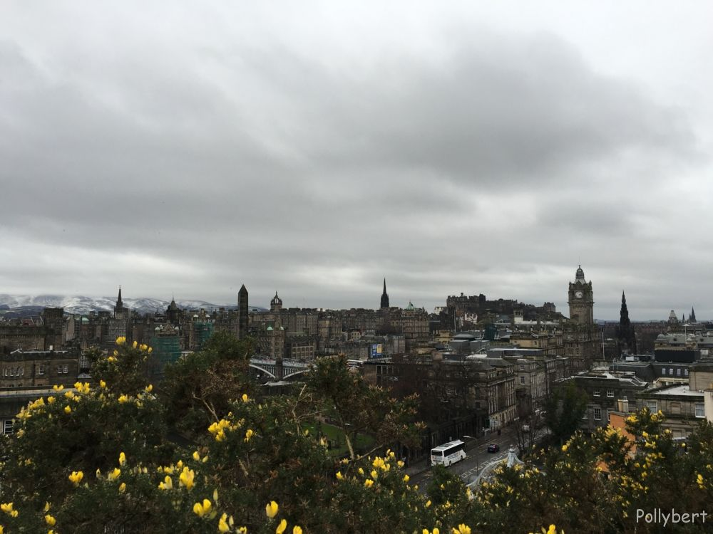 view over the city with gorse in front and snow in the back @Edinburgh, Scotland