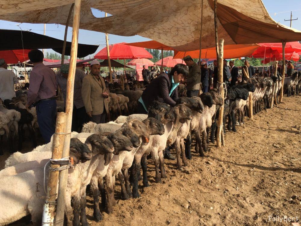 Sunday market @Kashgar
