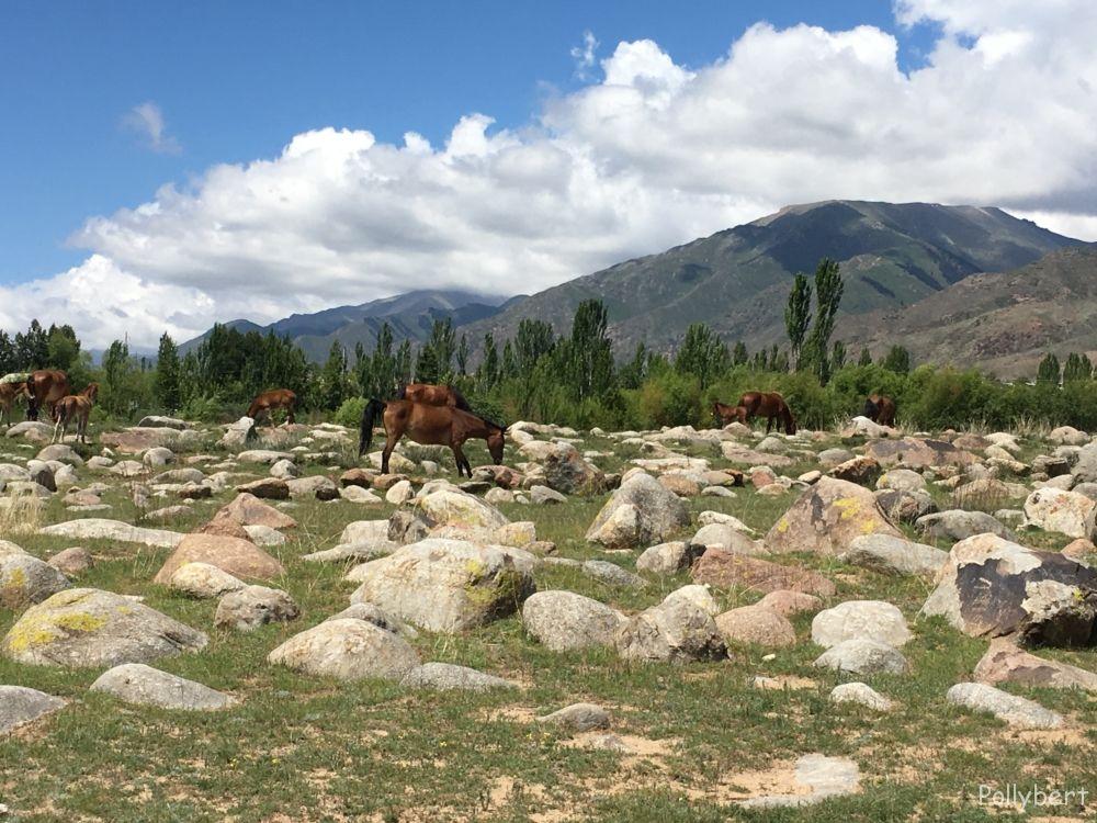 Cholpon-Ata @Kyrgyzstan