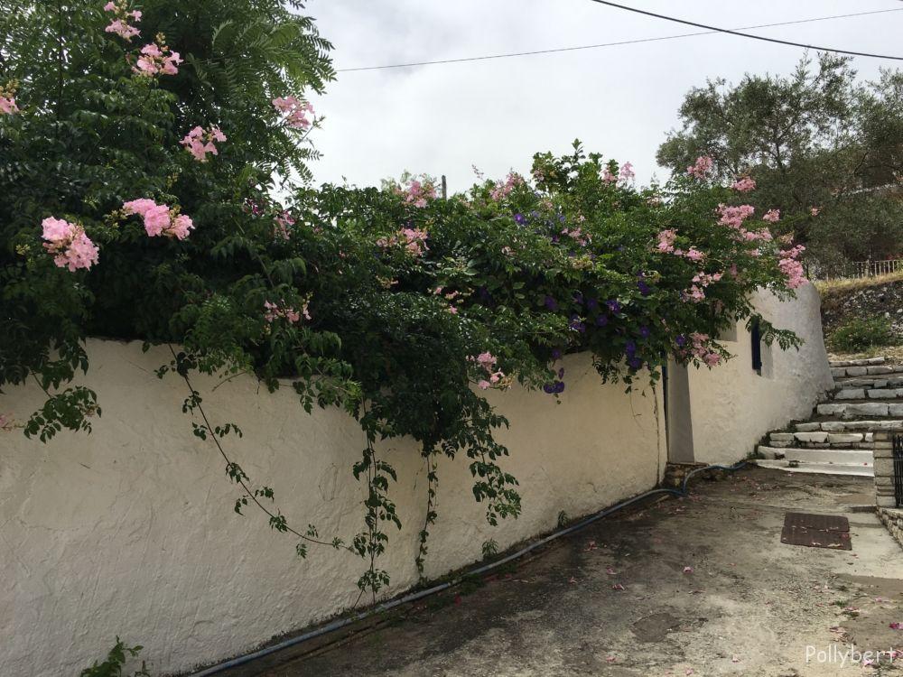 Pithari Cottage @Gaios