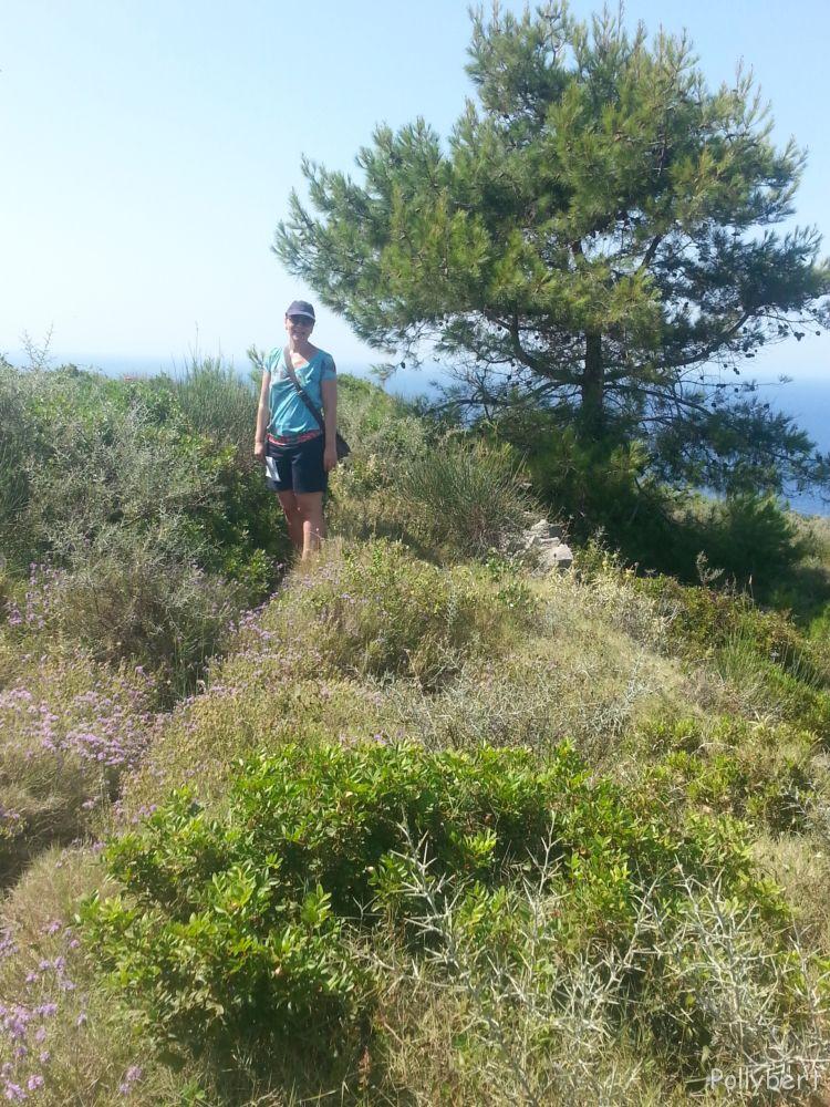 walking on the wild side @Paxos